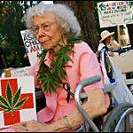 Medical Marijuana Patients