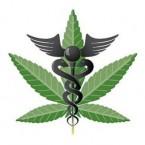 medical-marijuana-card-main_full-300x291