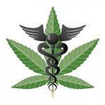 Maine Fifth Marijuana State