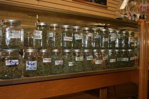 medical-marijuana-dispensary