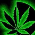 Medical Marijuana Dispensaries Colorado – Full Listing