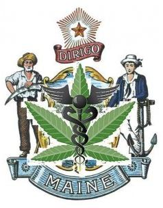 medical marijuana patient registration Maine
