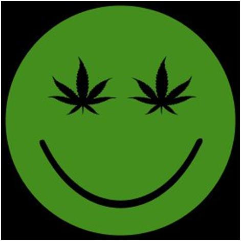 medical marijuana may help treat epilepsy