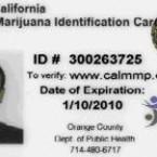 los-angeles-medical-marijuana-card-731405