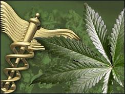 medical marijuana michigan