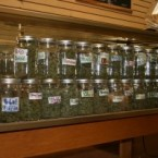 medical-marijuana-jars1-300x199