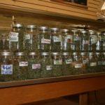 Medical Marijuana Dispensaries State-by-State