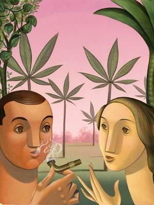 medical marijuana montana