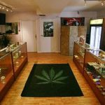 The Medical Marijuana Business and Millionaires