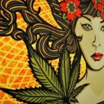 Granny Storm Crow's Medical Marijuana Reference List