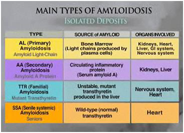 amyloidosis and medical marijuana