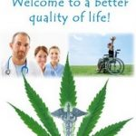 How to Find the Best Medical Marijuana Doctor