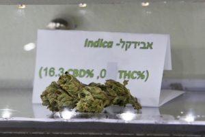 Israel Weed