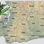 Washington Medical Marijuana Laws