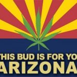 Should Arizona Destroy Seized Medical Marijuana?