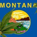 Montana re-thinking its medical marijuana program