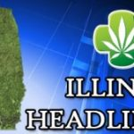 Illinois Voting For a Medical Marijuana Bill