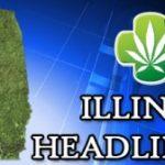 Illinois Voting For a Medical Marijuana Bill