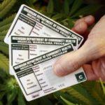 Michigan Medical Marijuana Changes Pt. II
