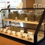 Operating a Medical Marijuana Dispensary