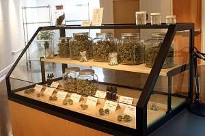 Operating a Medical Marijuana Dispensary