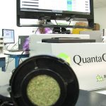 Two Major Marijuana Research Companies Are Merging