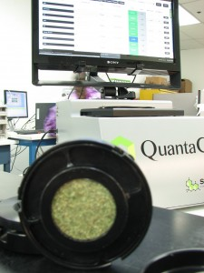 marijuana_research_company_001