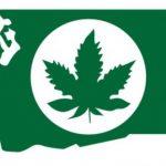 Washington State Marijuana Update Pt. II