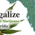 Florida's Campaign For Medical Marijuana
