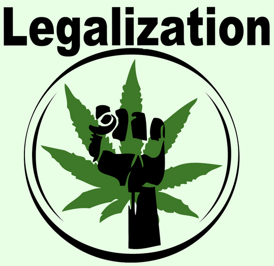 legalization of marijuana dont do it Newsom's spokesman pointed to three examples during his campaign where trump said marijuana legalization should be up to the states don't we agree.