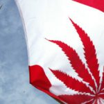 Confusion Over Marijuana Laws in Canada