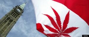 marijuana_canda_001