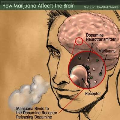 Are You Addicted To Marijuana