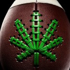 Medical Marijuana Sports