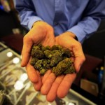 How To Obtain Medical Marijuana In Massachusetts