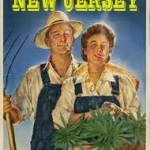 A Slap In the Face To New Jersey's Medical Marijuana Program