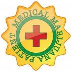 medical marijuana to become florida