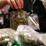 Medical Marijuana Sales Begin in Connecticut