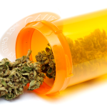 Survey Results For Cannabis Therapy To Treat Epilepsy