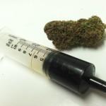 Should Everyone Make Their Own Cannabis Oil?