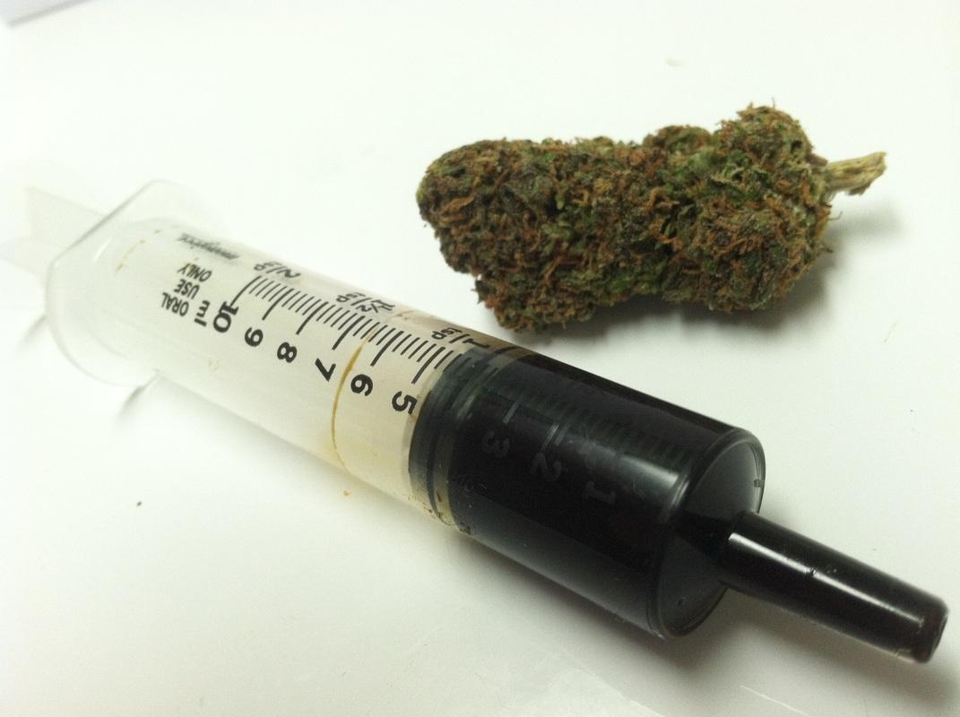 Should-Everyone-Make-Their-Own-Cannabis-Oil
