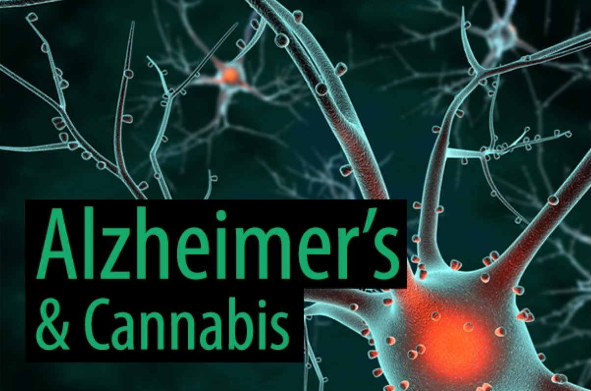 Could Cannabis Help Alzheimer's Patients