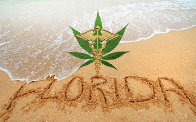 The-Consequences-of-Growing-Weed-in-Florida