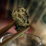 How Marijuana Became A Highly Valued Commodity