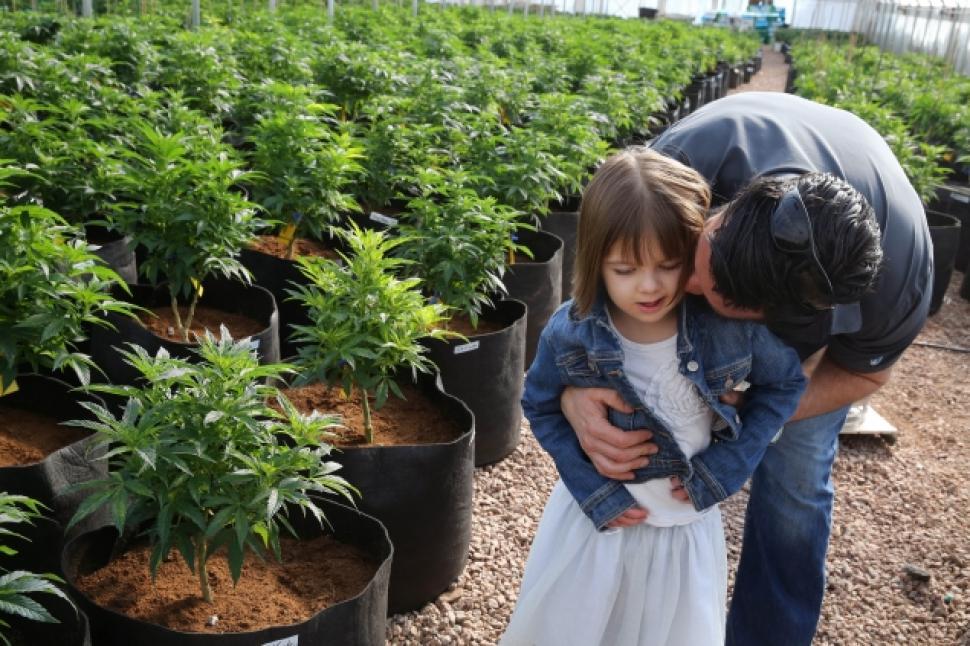 Marijuana-Impact-on-Children