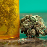 Marijuana Potency: Then & Now