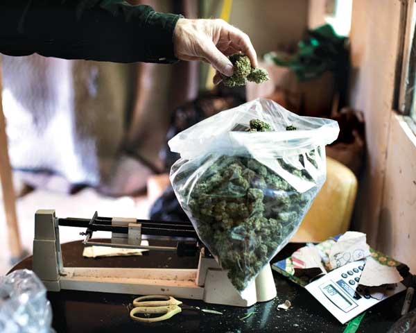 Are-Marijuana-Dealers-Still-In-Business