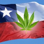 Chile Removes Cannabis from Its Category of Hard Drugs