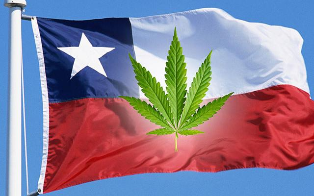 Chile-Removes-Cannabis-from-Its-Category-of-Hard-Drugs