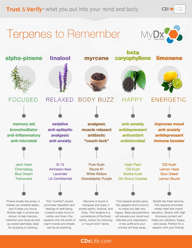 Get-to-Know-Your-Terpenes